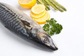 Raw mackerel with parsley and lemon — Stock Photo