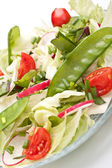 Healthy salad with Bok Choy — ストック写真
