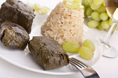 Grape leaves with rice — Stockfoto