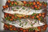Baked seabass fish — Stock Photo