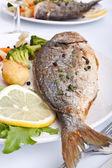 морской лещ рыба с овощами — Стоковое фото