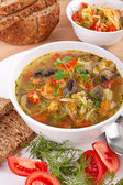 Cabbage and mushroom soup — Stock Photo