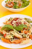 Porciones de colores penne pasta con salsa de tomate y albahaca — Foto de Stock