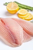 Raw Filleted Fish — Stock Photo