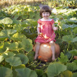 Stock Photo: Girl sitting on pumpkin