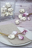 Easter quail eggs with pink cyklamen and napkin — Stock Photo