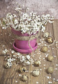 Wielkanoc, różowy kwiat z małych białych kwiatów i i jaja perlic leżącego na podłodze drewnianej — Zdjęcie stockowe