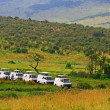 Stock Photo: Safari game drive in Maasai MarNational Reserve, Kenya