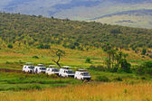 Safari game drive in Maasai Mara National Reserve, Kenya — 图库照片