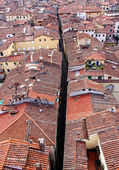 Roofs of Siena, Italy — Stock Photo
