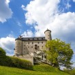 Castle in beautiful day, Bobolice, Poland — Stock Photo #46341165