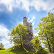 Castle in beautiful day, Bobolice, Poland — Stock Photo #46341187