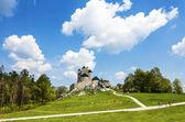 Bella landcape con castello in giornata di sole con nuvole e blu — Foto Stock