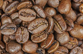Roasted coffee beans, close up. — Stock Photo