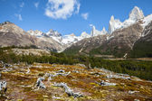 Fitz Roy mountain range, Andes in Patagonia, Argentina  — Stock Photo