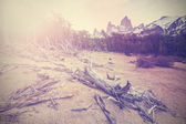 Vintage mountain background with Fitz Roy Range, Argentina  — Zdjęcie stockowe