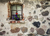 Flowers on the window of ancient building stone wall. — Stock Photo
