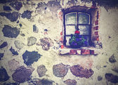 Vintage picture of flowers on the window, ancient building stone — Stock Photo