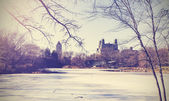 Vintage picture of Central Park lake in winter. New York, USA.  — Zdjęcie stockowe
