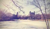 Vintage picture of Central Park lake in winter. New York, USA.  — ストック写真