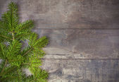 Christmas fir tree on a wooden board. — Stock Photo