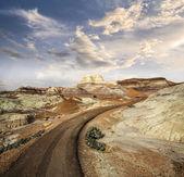 Path in Petrified Forest National Park, Arizona, USA. — Stock Photo