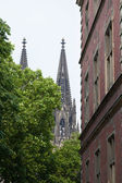 Cologne cathedral between house and green tree — Stock Photo
