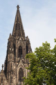Cologne cathedral and blue sky and green tree — Stock Photo