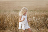 Little girl walks on a field of wheat — Stock Photo
