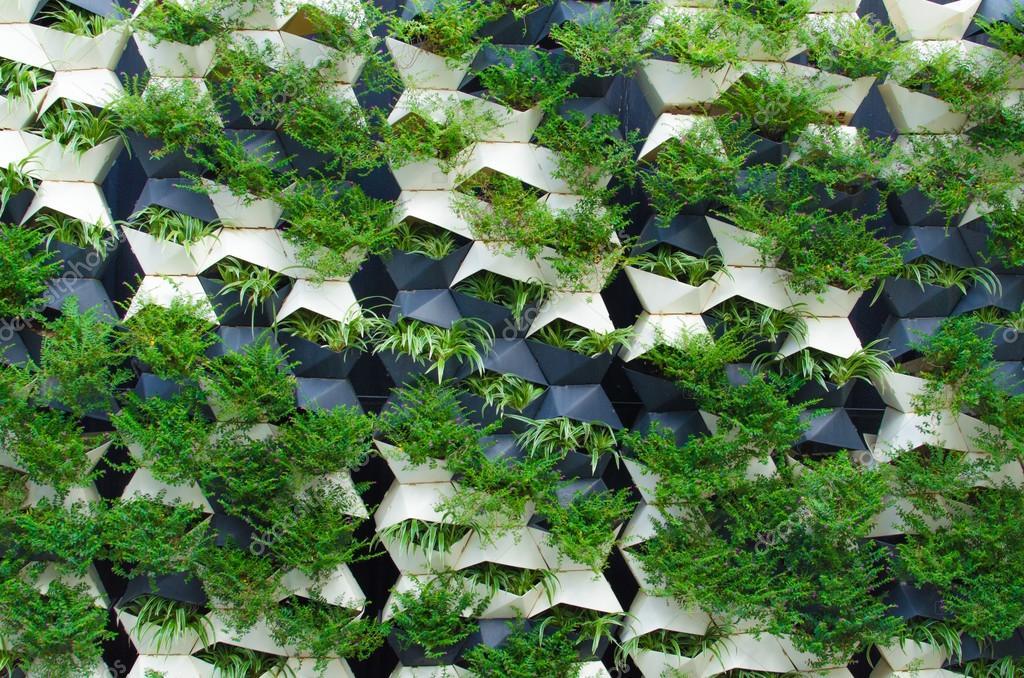 Gr ne pflanzen wand stockfoto 50182705 for Wand pflanzen