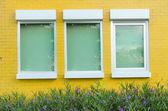 Gele bakstenen muur met windows plantje en bloem — Stockfoto