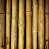 The old yellow bamboo fence background texture — Stock Photo