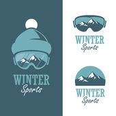 Winter sports — Stock Vector