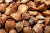 Buckwheat texture. — Stock Photo