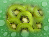 Kiwi in the rain — Photo