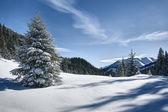 Tatra gebergte in de winter — Stockfoto