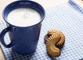 Chocolate cookies and milk — Stock Photo