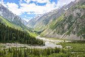 Tien-Shan mountains, Kyrgyzstan — Stock Photo