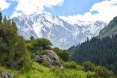 田北俊议员山山脉吉尔吉斯斯坦 — 图库照片