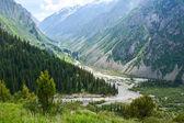 Estate in montagna — Foto Stock