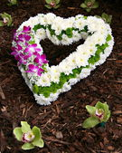 Flowers as a love symbol — Stock Photo