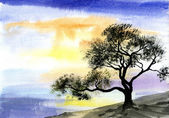 Watercolor drawing landscape - tree near the river — Stockfoto
