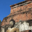 Buddha Statue in Sukhothai Historical Park,Thailand. — Stock Video