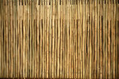 Wooden Pole Screen Texture — Stock Photo
