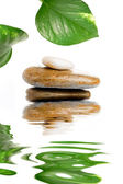 Zen stones with green leaves — Stock Photo