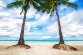 Unspoiled tropical beach in the Maldives — Stock Photo
