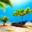 Dream scene. Old boat lying under beautiful palm trees on the be — Stock Photo #46979709