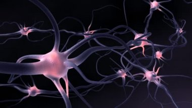 Excitation of the nervous system — Stock Video