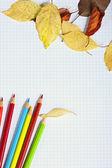 色鉛筆と木製サーフに秋の葉を持つノートブック — ストック写真