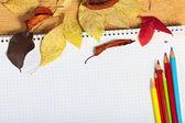 ноутбук с цветными карандашами и осенние листья на деревянные серфинга — Стоковое фото